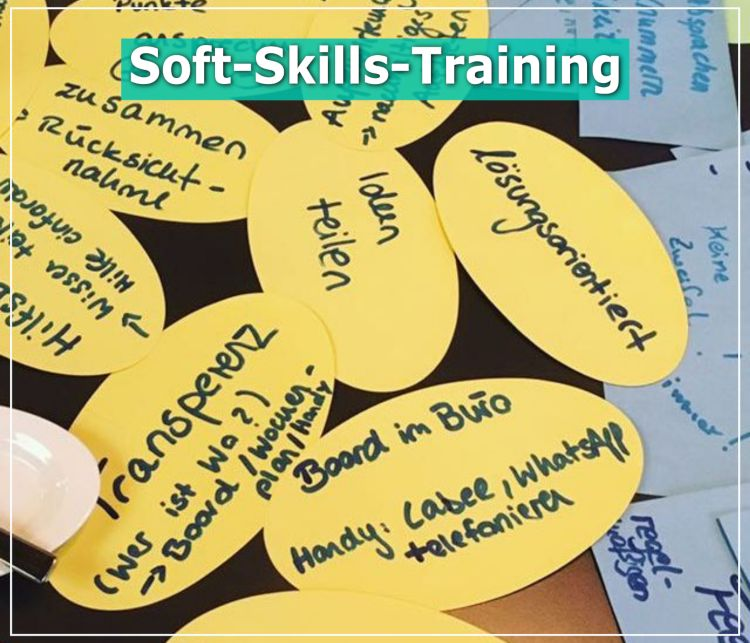 project_soft-skills-training